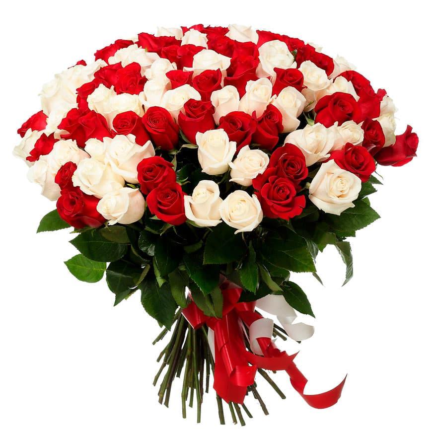 Самые красивые розы картинка на подарок